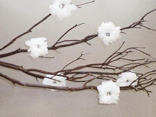 Tissue Paper Flowers by Jen Langman
